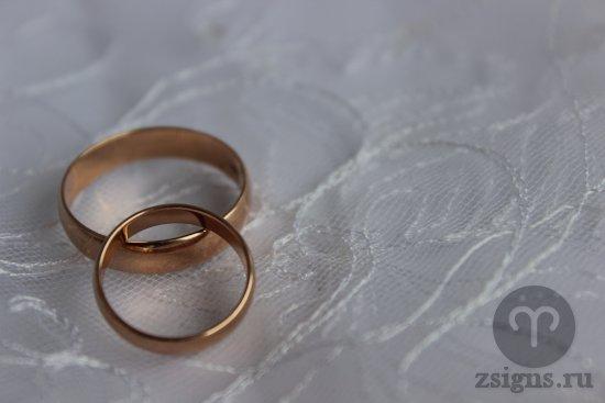 zolotye-obruchalnye-kolca-kruzhevo-fata-svadba