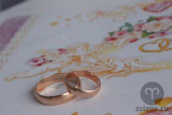 zolotye-obruchalnye-kolca-na-svadebnom-albome